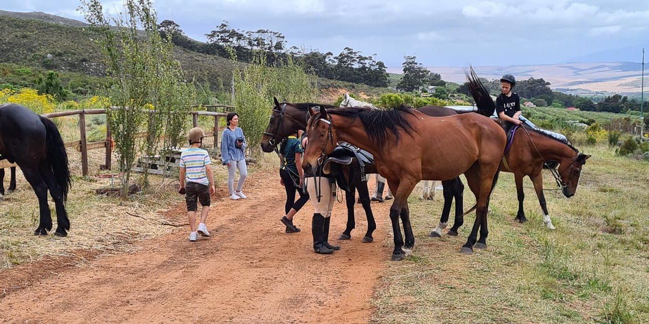 https://kleinmondtourism.co.za/wp-content/uploads/2020/05/Horse-Riding-1280x640.jpg