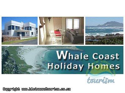 Whale Coast Holiday Homes