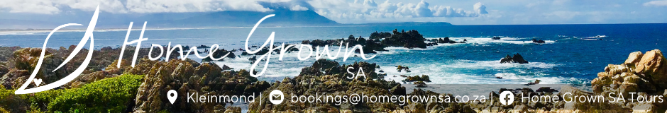https://kleinmondtourism.co.za/wp-content/uploads/2021/03/3.png